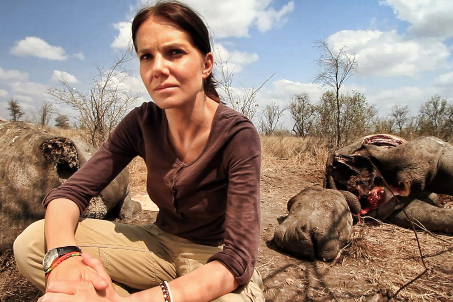 LOCAL RHINO POACHING FILM WINS BIG