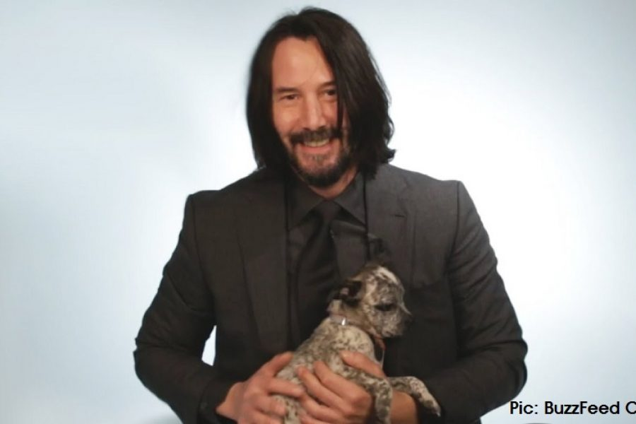 [WATCH] Keanu Reeves Playing With Puppies