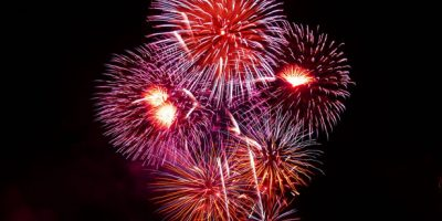 NO FIREWORKS ALLOWED FOR 2019 – SPCA WELCOMES THE DECISION
