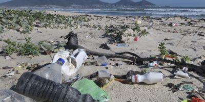 W.W.F-S.A: Plastic-pollution a sector-wide problem