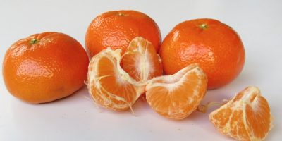 S.A. citrus-farmers to export record-number of fruit in 2021!