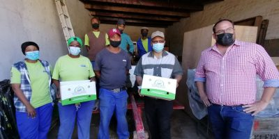 Garlic project in Murraysburg creating much needed jobs