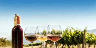 SA has an excess of 11 months' worth of wine in its cellars