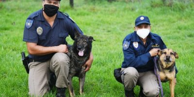 The Metro Police K9 Unit has bid farewell to two of its furry members