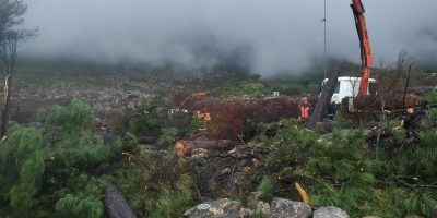 SANParks has announced the re-opening of certain areas which have been closed off to hikers since the April fire